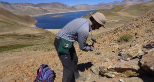 مجالات العمل لخريجي كلية العلوم قسم جيولوجيا