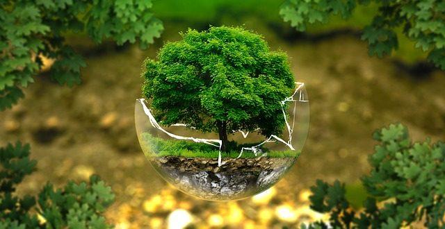 الكيمياء الخضراء