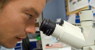 مجالات عمل خريج علوم قسم كيمياء