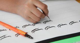أقسام اللغة العربية