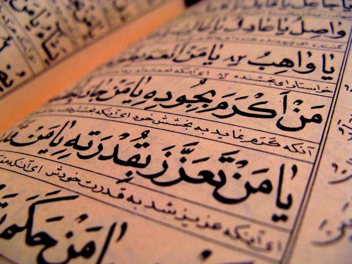 فروع اللغة العربية
