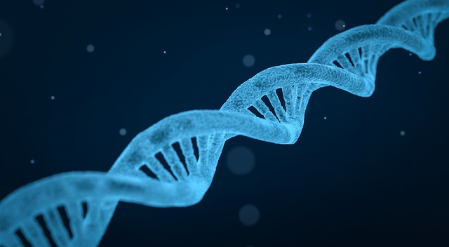 البيولوجيا الجزيئية